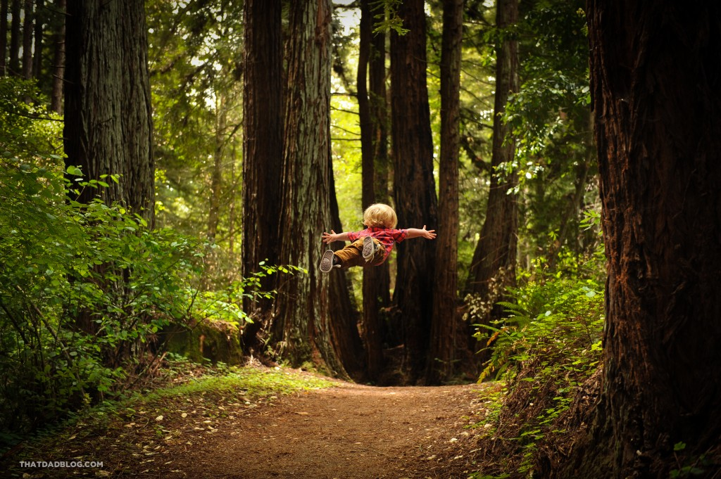 Wil-Can-Fly-Henry-Cowell-2-2-1024x681