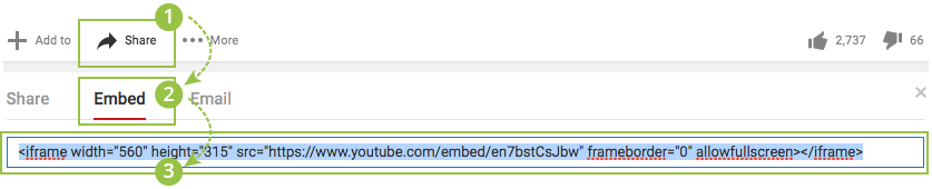 Getting the YouTube Insertion Code